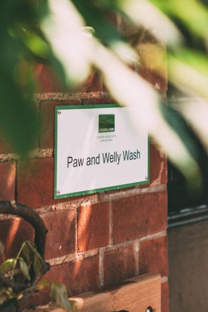 welly wash